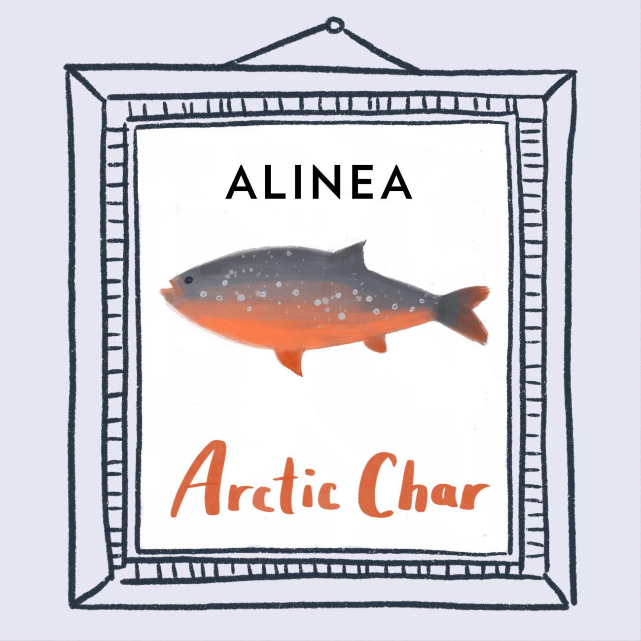 arcticChar